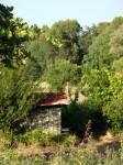 Petite cabane des bords de Loire.JPG
