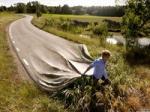 Chemin route.jpg